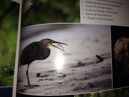 Publié dans le magazine de la Fédération Francaise Photographique