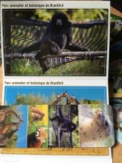 1er concours branféré, cartes postales ect..