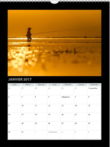 janv2017.jpg
