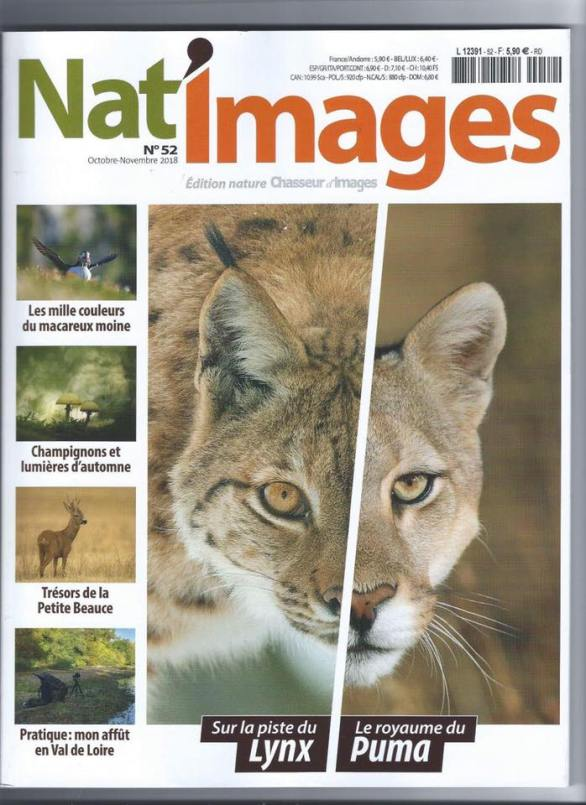 natimage54